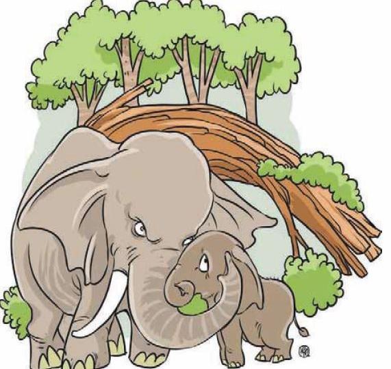 Kanki si jaja gajah